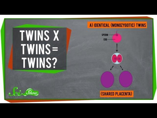 Twins x Twins = Twins?