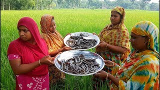 Expensive Country Catfish Cutting  & Curry Cooking For Whole Village Peoples By Our Pride Women Team