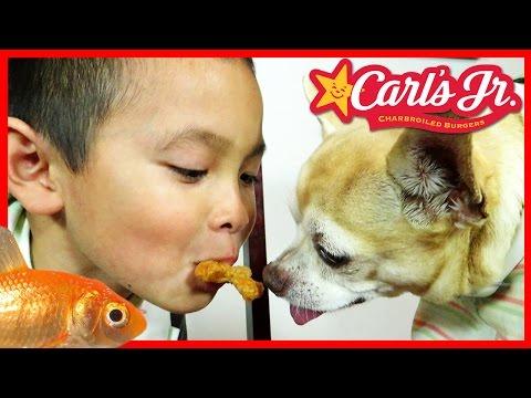 Feeding my DOG & Goldfish Carl's Jr. Chicken Stars, Kids Meal - TigerBox HD