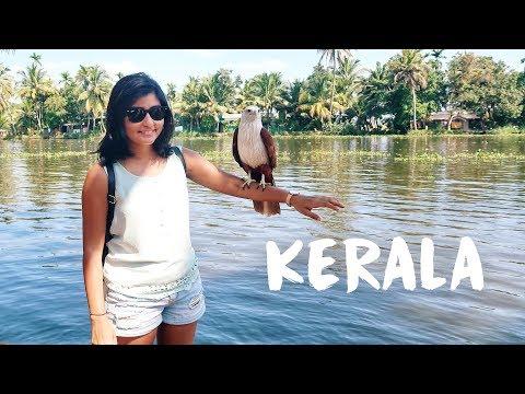 KERALA TRAVEL VLOG   Exploring Kochi and Alleppey