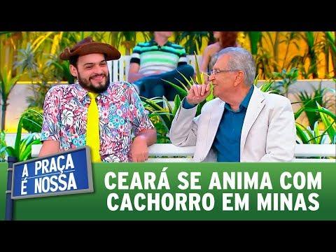 Ceará se anima com cachorro em Minas | A Praça é Nossa (05/10/17)