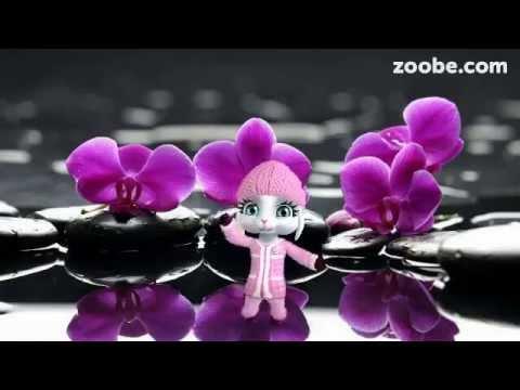ZOOBE зайка Поздравление с 1 Апреля - Видео из ютуба