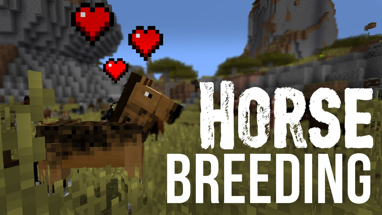 Breeding Horses Donkeys Mules Minecraft Youtube
