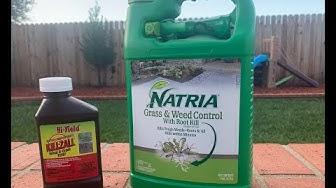 Weed Killer Showdown Killzall vs Natria