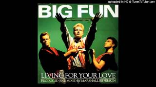 "Big Fun - Living For Your Love 12"" - 1989"