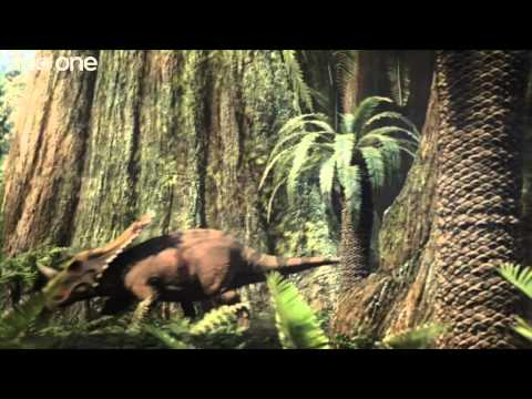 Tyrannosaur Rivalry - Planet Dinosaur  - Episode 3 - BBC One