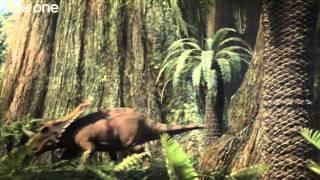 Tyrannosaur Rivalry - Planet Dinosaur  - Episode 3 - BBC One thumbnail
