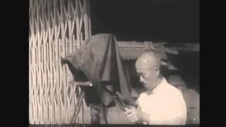 Японский великан  Предположительно начало 20 века