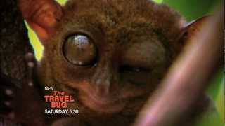THE TRAVEL BUG 7TWO Promo