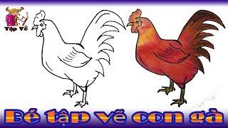 Bé tập vẽ con gà theo mẫu | draw the chicken