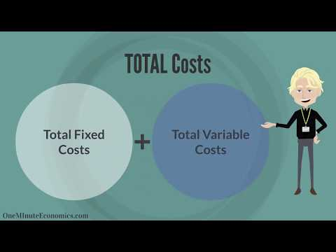 Fixed/Variable/Total Costs and the Marginal Cost of Production Defined & Explained in One Minute
