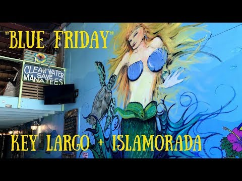 Key Largo & Islamorada Adventure | Day Trip from Miami | South Florida Vlog