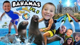 KIDS PLAY w  SEA LIONS + POWER TOWER WATER SLIDES!! FUNnel Family LEAVES Bahamas ◕︵◕ Trip Part