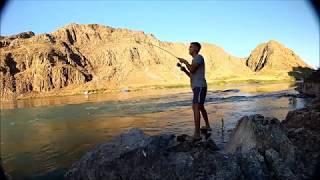 Рыбалка на реке Или. Сазан, Жерех. 25-26 июня
