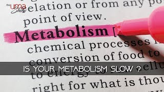 Why is Your Metabolism Slow?