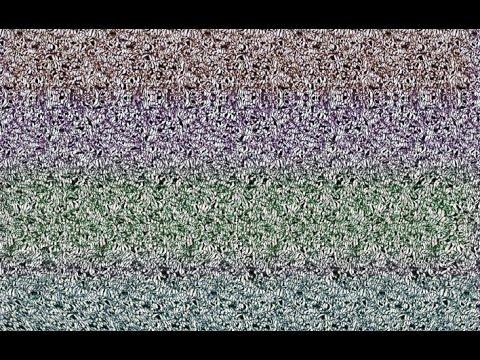 Puedes Ver La Figura Que Se Oculta En La Imagen Ilusion Optica