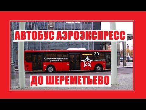 Автобус Аэроэкспресс до Шереметьево