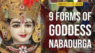 Goddess Navadurga( Nine forms of Hindu Goddess Durga)