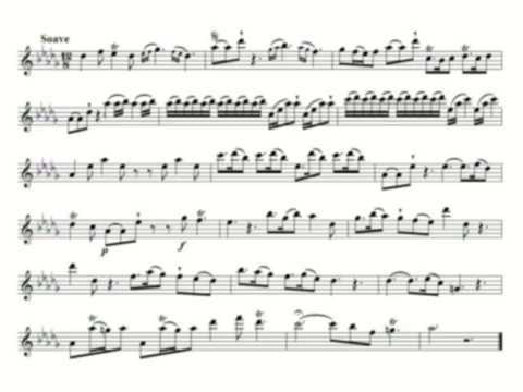 Telemann: canonic sonata 6/6 - TWV 40:123, on recorder
