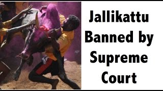 Jallikattu controversy Supreme court ban Burning Issues UPSC/IAS/PSC