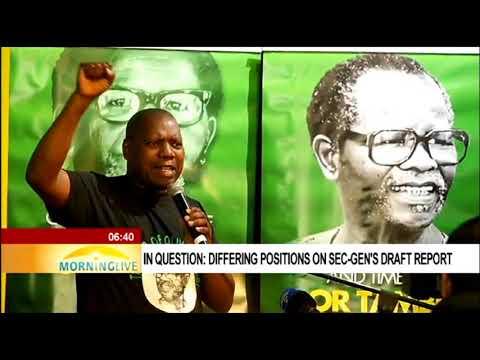 Ralph Mathekga unpacks nomination process underway in the ANC branches