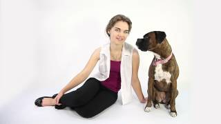 Teaching Touch - Doggiebuddy Training Video