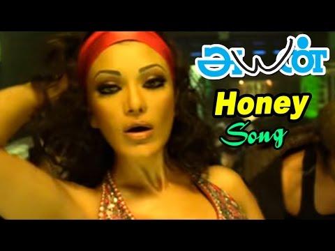 Ayan | Ayan Songs | Tamil Movie Video Songs | Honey Honey Song | Glamour Song | Akashdeep Saighal