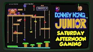Donkey Kong Jr (Arcade & NES) - The One Where Mario