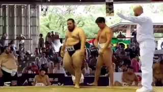 BRA VS MGL Teams Sumo World Championships 2015
