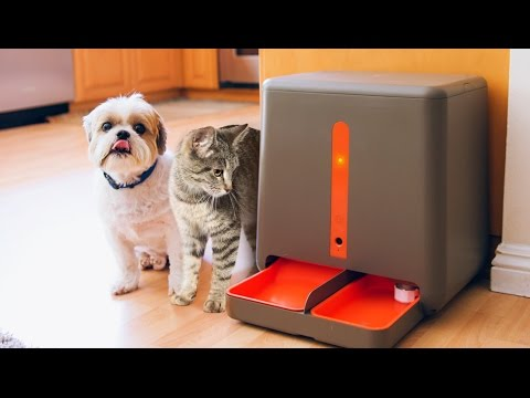 5 Amazing Pet Gadgets You MUST HAVE! ▶5
