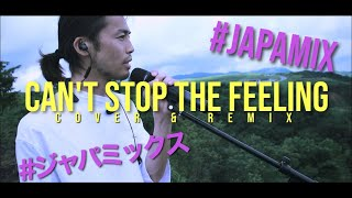 Justin Timberlake - CAN'T STOP THE FEELING!(cover &REMIX by ROYALcomfort)
