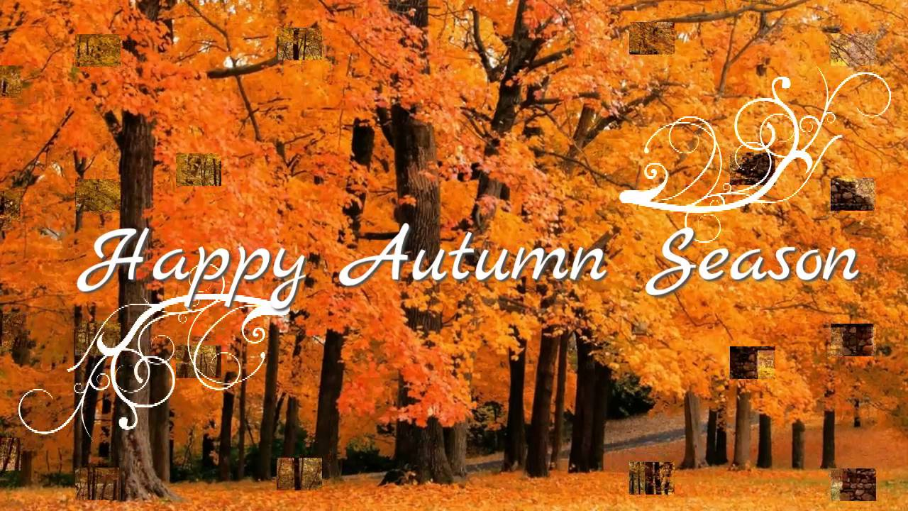 Autumn greetings sayings gallery greetings card design simple happy autumnhappy fallwishesgreetingssmssayingsquotese card m4hsunfo