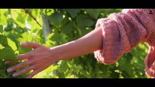 Showreel Vins & Champagnes 2020