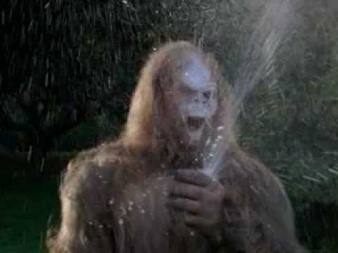 Jack Links Jerky >> Messin With Sasquatch-Jack Links Beef Jerky-Cold One - YouTube