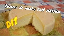 Faire du fromage maison au lait de vache !!! 🐮