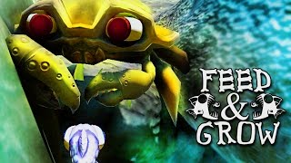 King of the Ocean ~ Feed and Grow: Fish #6