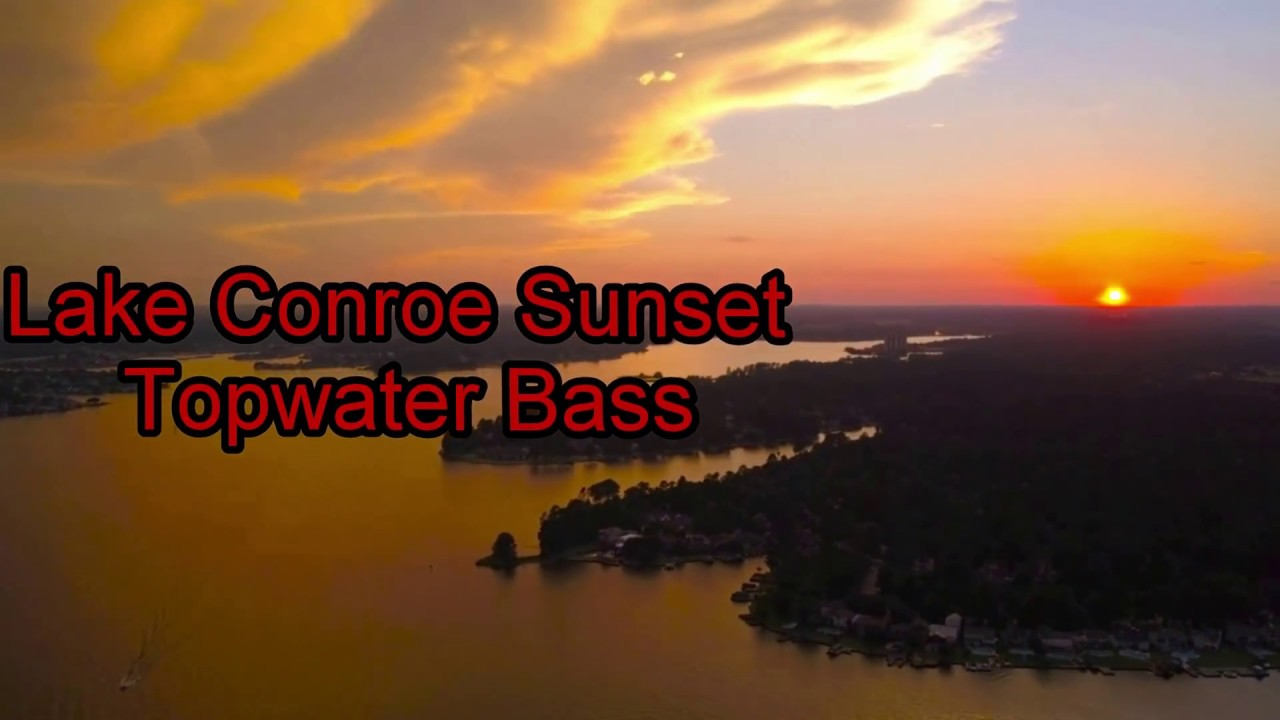 Lake conroe sunset topwater popper bass fishing youtube for Lake conroe bass fishing