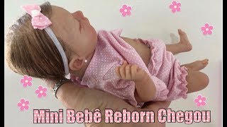 CHEGADA DA MINHA MINI BEBÊ REBORN  #reborn