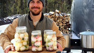 Pickled Eggs | Preserving the Perfect Snack