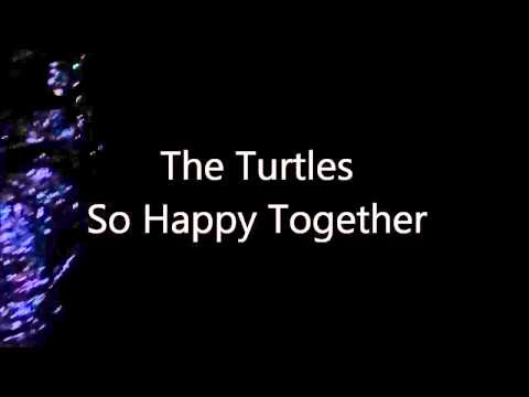 The Turtles So Happy Together