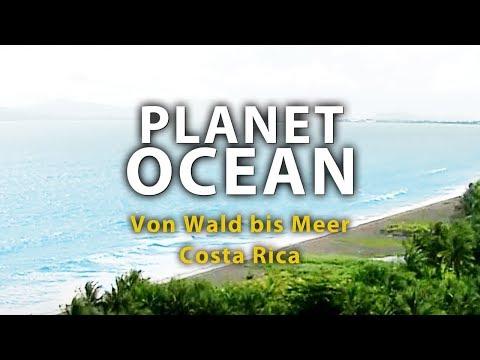 Planet Ocean - Von Wald bis Meer, Costa Rica 2011 Dokumentation   Film deutsch ᴴᴰ