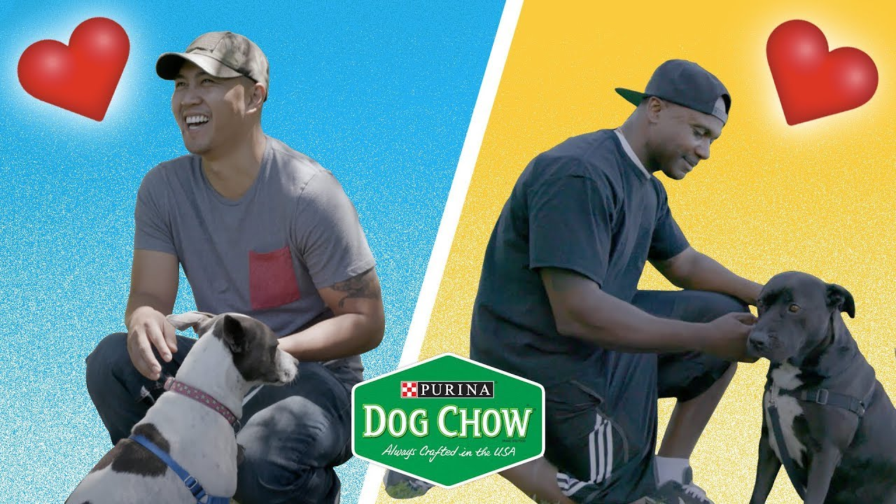 How Rescue Dogs Save Veterans // Presented By Purina Dog Chow