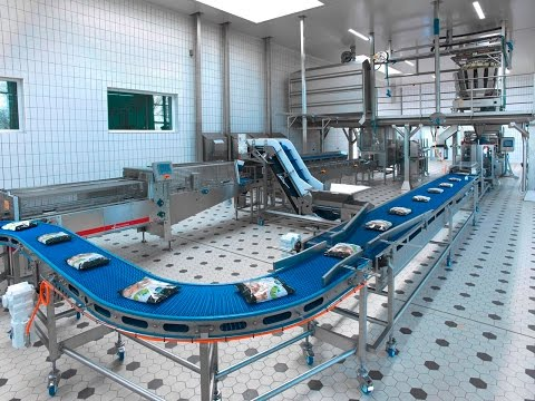 Van der Lee Seafish Fish Factory. How it's made fish and seafood