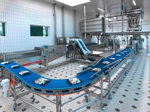 Van der Lee Seafish Fish Factory