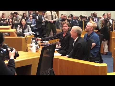 Brad Pitt & Diana Keaton at LA County supervisors meeting