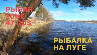 РЫБАЛКА НА РЕКЕ ЛУГА ВЕСНА 2020 ДЕНЬ 2 РЫБИН zone 47RUS