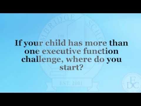 Peg Dawson: When Children Have More Than One Executive Function Challenge