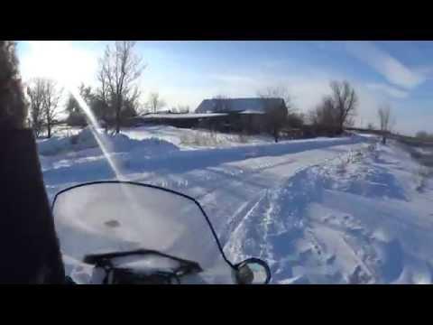 Охота на зайца. 31 декабря 2014 год. Саратовская область.