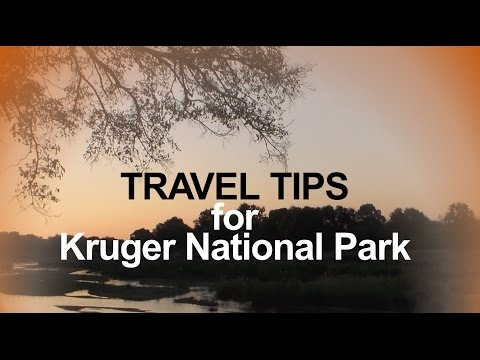 Travel tips for Kruger National Park
