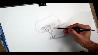How To Draw A Tree for Kids and Beginners: Drawing for Kids #howtodraw